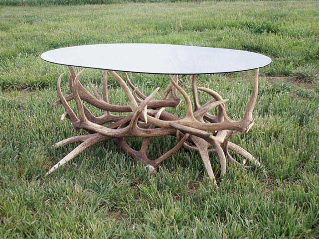 custom elk antler coffee table